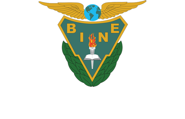 BINE mx